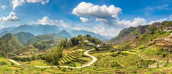 Foto auf Acrylglas Reisfelder Terraced rice field in Sapa