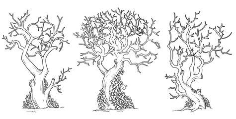 Scary trees with twisted leaves twisted with ivy outlined for coloring page
