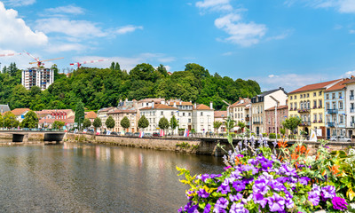 Flowers on a bridge across the Moselle River in Epinal, France Wall mural