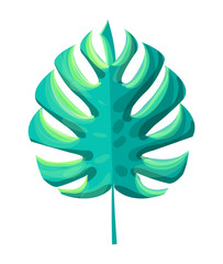 Monstera Tropical Leaf Plant Vector Illustration
