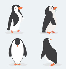 Cute penguin characters  in different poses set