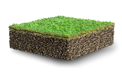 cut of soil with grass 3D illustration