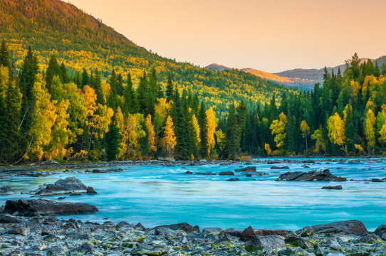 River flowing out of the Kanas Lake at Autumn, Xinjiang, China, The tree color is changed to yellow, Sky beautiful on the background