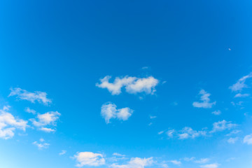 blue sky with white Cumulus clouds