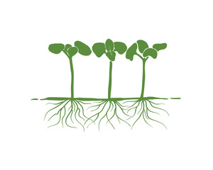 Green Sprout Seed Growth with Roots Sign Symbol logo vector
