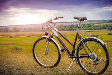 Purple bicycle with a frame for women in the meadow