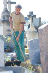 Man weeding in cemetary