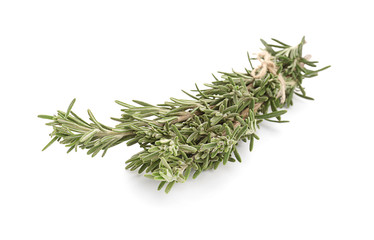Fresh green rosemary on white background