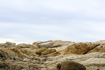reef is a group of rocks a ridge of sand and blue sky background