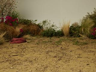fake landscaping on set