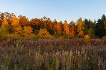 Autumn landscape of the Ural.Russia.