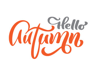 Hello autumn vector calligraphic text, hand lettering phrase. Illustration t-shirt or postcard print design, text design templates, Isolated on white background