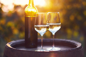 Two glasses of white wine on a wooden barrel in the vineyard at sunset