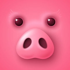 Pig face for Chinese New Year