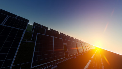 Field of Solar Panels with Sun Beyond the Horizon 3d rendering