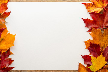 autumn leaves around a sheet of paper