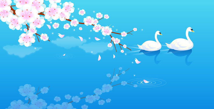 High angle view of two swans swimming in a river
