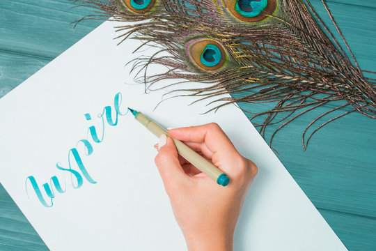 Calligrapher student practices in writing word inspire with green marker on canvas. Creative artist freelancer working on project at home studio. Peacock feathers.