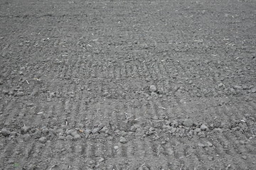 Soil of plowed farmland