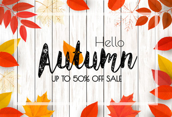 Autumn Background With Colorful Leaves For Shopping Sale. Vector