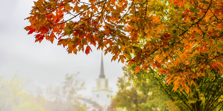 Autumn background with brightly colored foliage in foreground on side and blurre trees and church with steeple in background - half page web banner