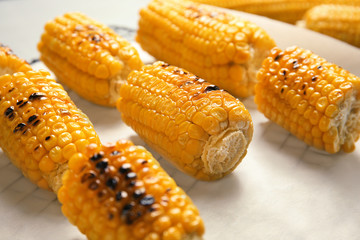 Fresh grilled tasty corn cobs on parchment paper, closeup