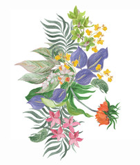 Colorful floral collection with leaves and tropical flowers; drawing watercolor. Design for invitation, wedding or greeting cards