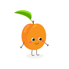 Vector illustration of adorable apricot character