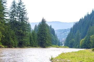 slope, forest river, stony surface, Carpathians, Ukraine