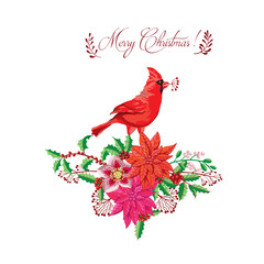 Christmas decoration with Bird and Poinsettia. Vector Illustration