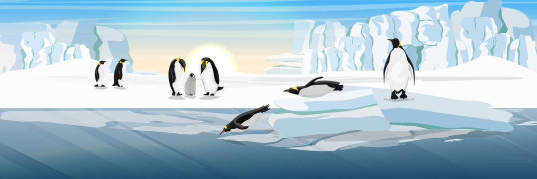 A flock of realistic imperial penguins. Two penguins dive from the ice floe into the water. The glacier and the snow-covered plains and the cold blue sea. Landscapes of the Antarctic.