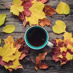 Square picture with autumn colorful leaves and a cup of tea