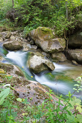 Forest mountain stream among stones with rapids