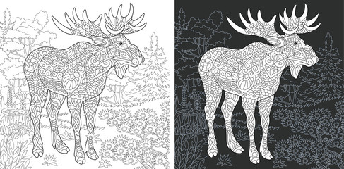Moose. Deer. Coloring Page. Coloring Book.