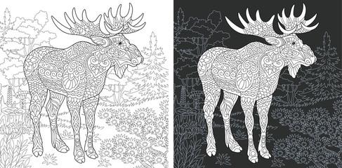 Moose. Deer. Coloring Page. Coloring Book.