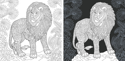 Lion. Coloring Page. Coloring Book.