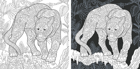 Black panther. Coloring Page. Coloring Book.