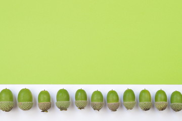 green acorns in a row on green and white background with copy space above
