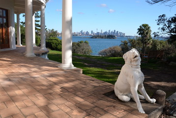 Sydney, Australia - Jun 20, 2015. Dog sculpture at Strickland House. View of Sydney skyline and Sydney Harbour in the background.