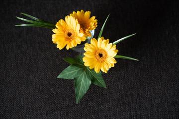 Einzelne Christbaumkugeln.Search Photos By Isabelle