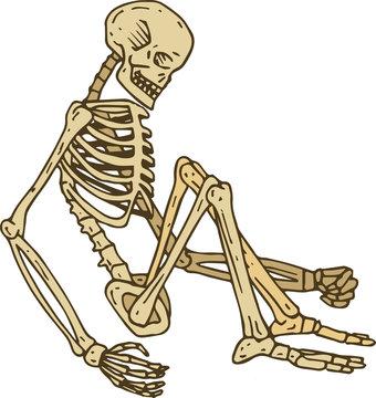 Isolated Sitting Skeleton