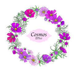 Cute Hand Drawn Cosmos Flower Wreath Isolated on White Background for Custom Pattern Designs and Illustrations for All Media, Web, Textile, Wallpaper. Beautiful Vector Cosmos Flower Design.