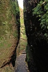 Weg durch die Drachenschlucht bei Eisenach