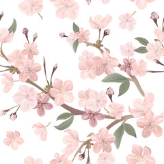 Floral retro seamless pattern, cherry or sakura flowers background, pastel vintage illustration in vector