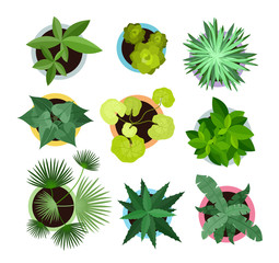 Vector illustration set of different house plants in pots isolated on white background. Top view collection of plants, cactus in flat cartoon style.