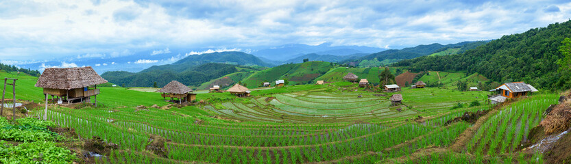 Garden Poster Rice fields Panoramic view house and terraced rice paddy field in Chiangmai, Thailand.