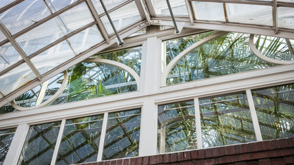 Greenhouse Ceiling Corner