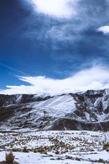 fotografía de nieve de altura