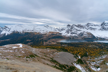 Fall colors accent snow covered peaks in Canada