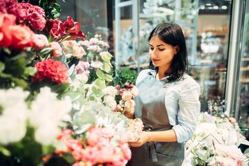 Obraz Female florist selects flowers for making bouquet - fototapety do salonu